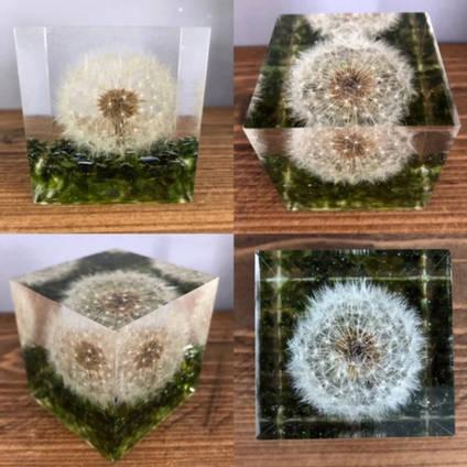 Bea-utiful-Creations-Dandelion-in-resin-cube