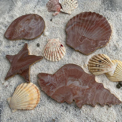 Brown-Resin-Shell-Coaster-Set-by-Luna-Art-Resin