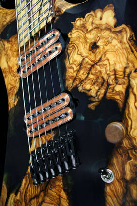 Poison Wood Guitar Close Up