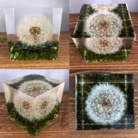 Bea-utiful-Creations-Dandelion-in-resin-cube Thumbnail