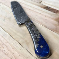 Blue Knife Scale Thumbnail