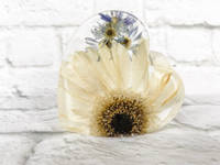White-Floral-Resin-Heart-by-EB-Flower-Preservation Thumbnail
