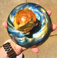 Rose and Resin Domes Thumbnail
